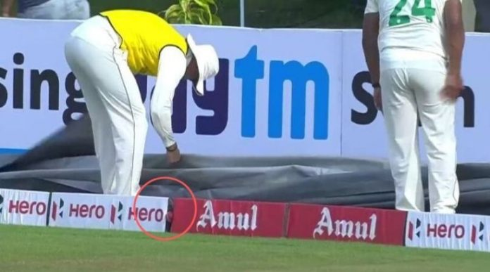 Clueless South African Fielders Fail to Search the Ball