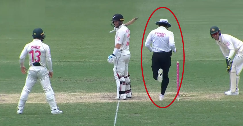 Aleem Dar's sprint amuses everyone