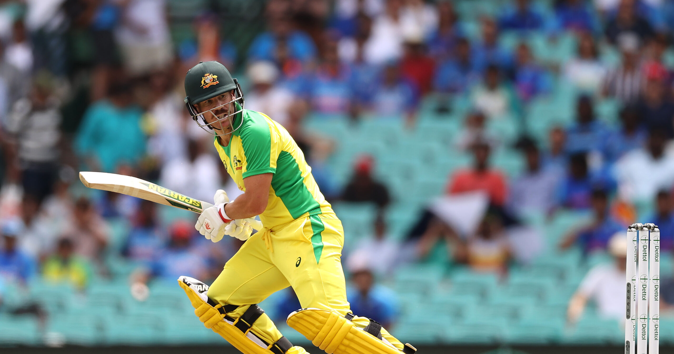 Pat Cummins and David Warner rule out of Limited Overs series against Indian Team, replacement named